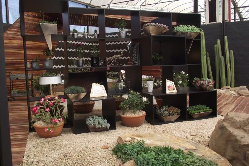 Dica De Lazer | Expoflora Holambra 2016 Estante