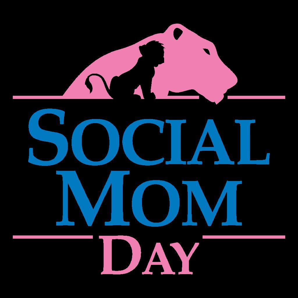 Social Mom Day | Começa as vendas do 1º Lote de Ingressos da edição 2017 Logo