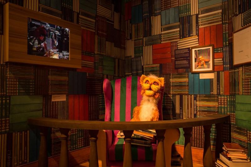 Exposição Castelo Rá - Tim - Bum | Começa Dia 24 no Shopping Iguatemi Campinas Gato Pintado