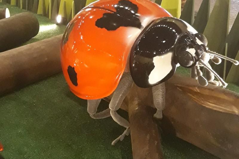 Programação Infantil de Férias | Insetos Gigantes Estão No D. Pedro Shopping Joaninha