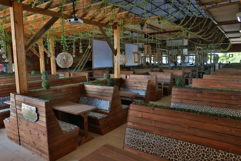 Lanchonete Temática | Mundo Animal Inaugura Em Campinas Interior